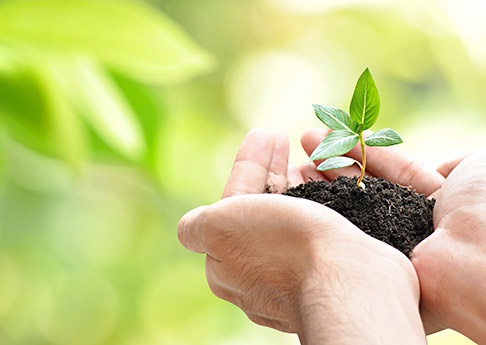 Zones Landscaping Specialists
